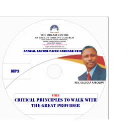 Critical Principles to Walk with The Great Provider.mp3