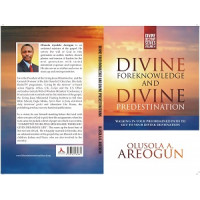 Divine Foreknowledge and Divine Predestination (E-book)