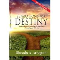 Separations for Destiny E-Book